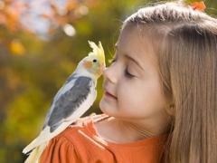 การบำบัดด้วยสัตว์คืออะไรและใช้สำหรับเด็กอย่างไร