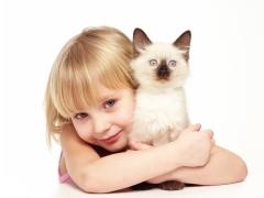 Apakah felinoterapi, manfaatnya untuk kanak-kanak