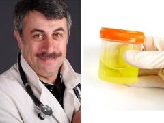 الدكتور كوماروفسكي على تحليل البول غير طبيعي في الطفل