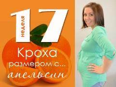 17 minggu kehamilan: apa yang berlaku kepada janin dan ibu hamil?