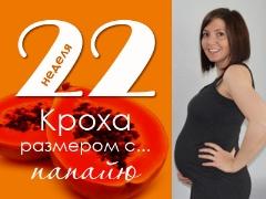 22 أسبوعًا من الحمل: ماذا يحدث للجنين والأم الحامل؟