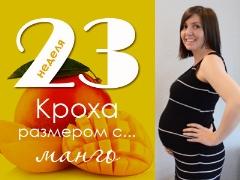 23 สัปดาห์ของการตั้งครรภ์จะเกิดอะไรขึ้นกับทารกในครรภ์และแม่ที่คาดหวัง