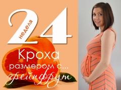 24 สัปดาห์ของการตั้งครรภ์จะเกิดอะไรขึ้นกับทารกในครรภ์และแม่ที่คาดหวัง