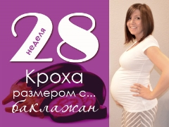 28 minggu kehamilan: apa yang berlaku kepada janin dan ibu hamil?