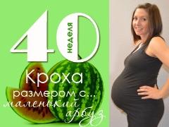 40 สัปดาห์ของการตั้งครรภ์จะเกิดอะไรขึ้นกับทารกในครรภ์และแม่ที่คาดหวัง