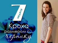 7 minggu kehamilan: apa yang berlaku kepada janin dan ibu hamil?