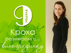 9 สัปดาห์ของการตั้งครรภ์จะเกิดอะไรขึ้นกับทารกในครรภ์และแม่ที่คาดหวัง