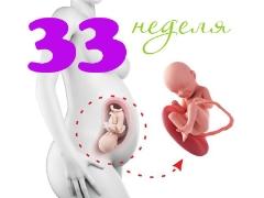 تطور الجنين في الأسبوع 33 من الحمل