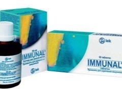 Immunal للأطفال: تعليمات للاستخدام
