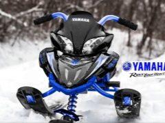 Yamaha snow scooters: caratteristiche del modello e suggerimenti per la scelta