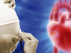 อะไรคือจุดสนใจของ hyperechoic ในช่องซ้ายของหัวใจทารกในครรภ์และเป็นอันตรายหรือไม่?