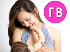 Borstvoeding van pasgeborenen en zuigelingen. Functies in de eerste dagen en maanden