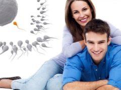 Vruchtbaarheid: alles over de vruchtbare functie van vrouwen en mannen