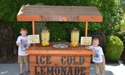Afaceri din leagăn: copiii americani au comercializat limonada și au salvat un apartament