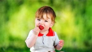 Vanaf welke leeftijd en wanneer kunt u een kind aardbeien geven?