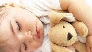 Calentador de juguetes: un regalo útil para un recién nacido