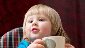 Vanaf welke leeftijd moet witloof worden gegeven aan kinderen en mogen baby's het drinken?