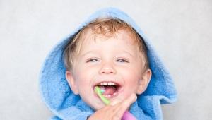 Quanti denti ha un bambino a 2 anni e come vengono trattati i denti a questa età?