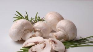 Op welke leeftijd kunnen paddenstoelen worden gegeven aan kinderen?