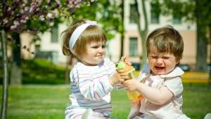 Wat te doen als een kind vecht op de kleuterschool: advies van een psycholoog