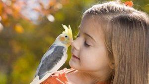 Qu'est-ce que la zoothérapie et à quoi sert-elle chez les enfants?