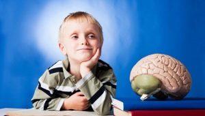 Symptomen en typen mentale retardatie bij kinderen