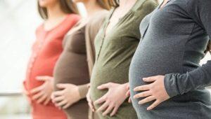 อัลตร้าซาวด์ในสัปดาห์ที่ 21 ของการตั้งครรภ์ขนาดของทารกในครรภ์และคุณสมบัติอื่น ๆ