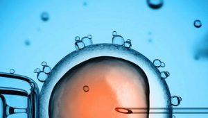 สถิติทั้งหมดของการผสมเทียม: จากความน่าจะเป็นของการตั้งครรภ์ตั้งแต่ครั้งแรกจนถึงร้อยละของภาวะแทรกซ้อน