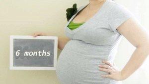 Keenam bulan kehamilan