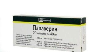 استخدام بابافيرين أثناء الحمل في المراحل المبكرة