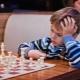 Come scegliere un scacchi per un bambino?