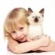 Quelle est la félothérapie, ses avantages pour les enfants