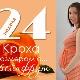 24 minggu kehamilan: apa yang berlaku kepada janin dan ibu hamil?