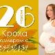 26 สัปดาห์ของการตั้งครรภ์จะเกิดอะไรขึ้นกับทารกในครรภ์และแม่ที่คาดหวัง