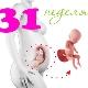 تطور الجنين في الأسبوع الحادي والثلاثين من الحمل