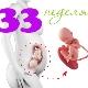 Berat dan parameter lain janin pada minggu ke-33 kehamilan