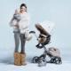 Passeggini per l'inverno: una panoramica dei modelli più popolari
