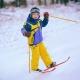 Skis kanak-kanak: variasi dan kriteria pemilihan