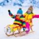Jenis sleds dan tips mengenai pilihan mereka