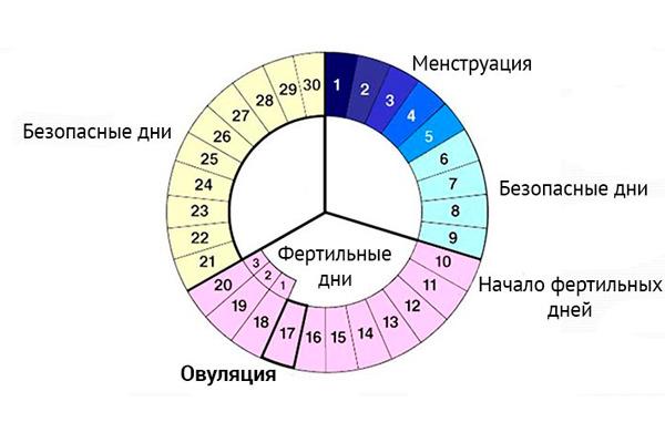 Metodo Del Calendario.Gel Aktifert Per Il Concepimento Istruzioni Per L Uso Recensioni