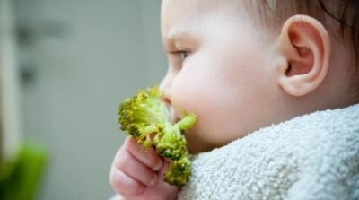 Broccoli kukus untuk bayi