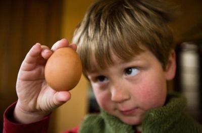 เด็กดูที่ไข่
