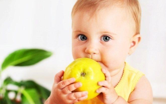 เด็ก 2 ปีกับแอปเปิ้ล