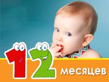 Bayi menu dalam 1 tahun
